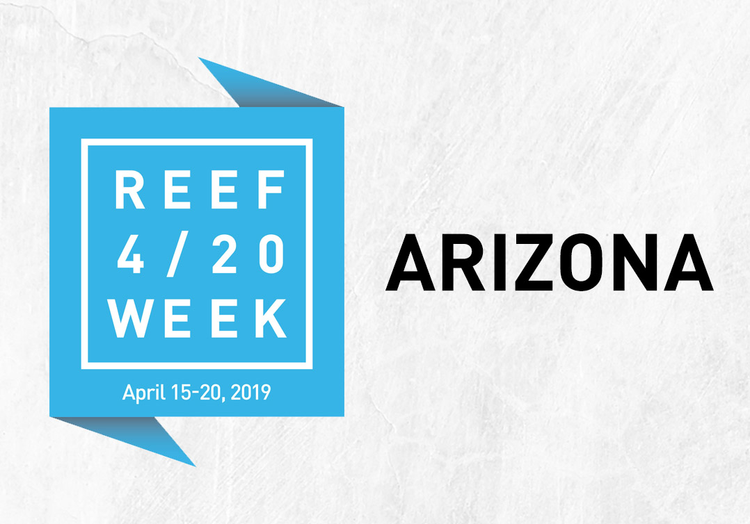 Reef 4/20 Week: Arizona Deals & Specials – Reef Dispensaries